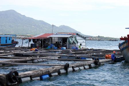 nuôi thủy sản
